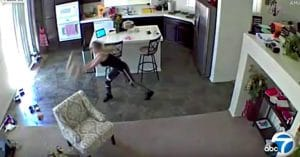 dog-sitter-slams-puppy-being-horrifically-abused