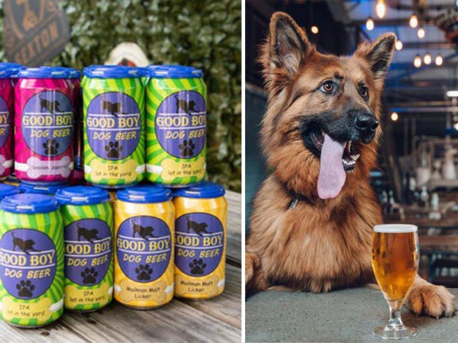Good Boy Dog Beer