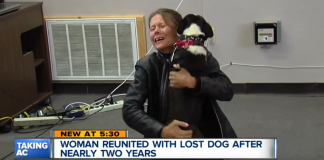 lost her dog