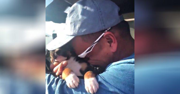 cute puppy cry