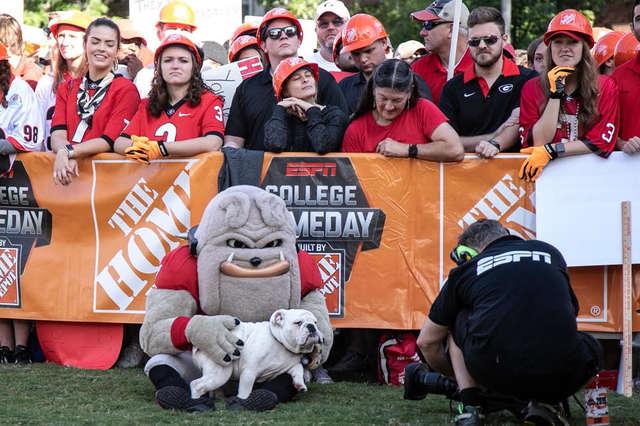 Kirby the bulldog and mascot petting