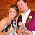 Rescue puppies at wedding