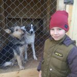 9-year-old-Russian-boy-trades-his-art-for-abandoned-dog-food-and-medicine-5da51e90973a6__700