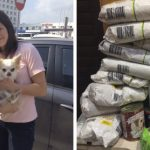 9-year-old-Russian-boy-trades-his-art-for-abandoned-dog-food-and-medicine-5da95cdecdce8__700