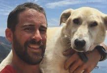 marine saves a dog