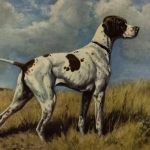 extinct breeds of dogs