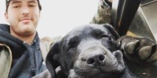 deaf puppy