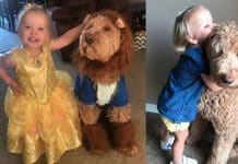 child and her dog dance couple