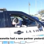 cops-take-shelter-dogs-on-rides-around-town-to-increase-their-chances-of-adoption-01-1