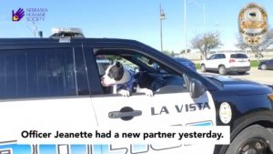 cops-take-shelter-dogs-on-rides-around-town-to-increase-their-chances-of-adoption-01