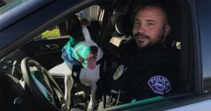 cops helping dogs
