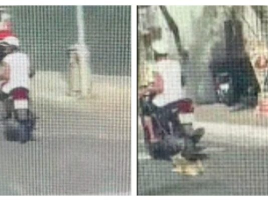dog was dragged alongside a scooter