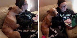 shelter dog hugging his new mom