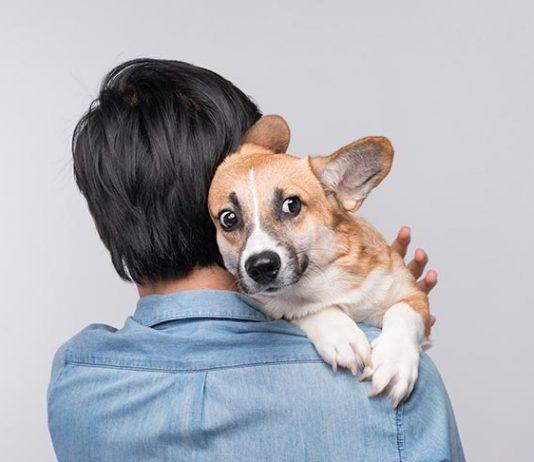 cowardly dog