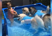 Adorable Pool Party